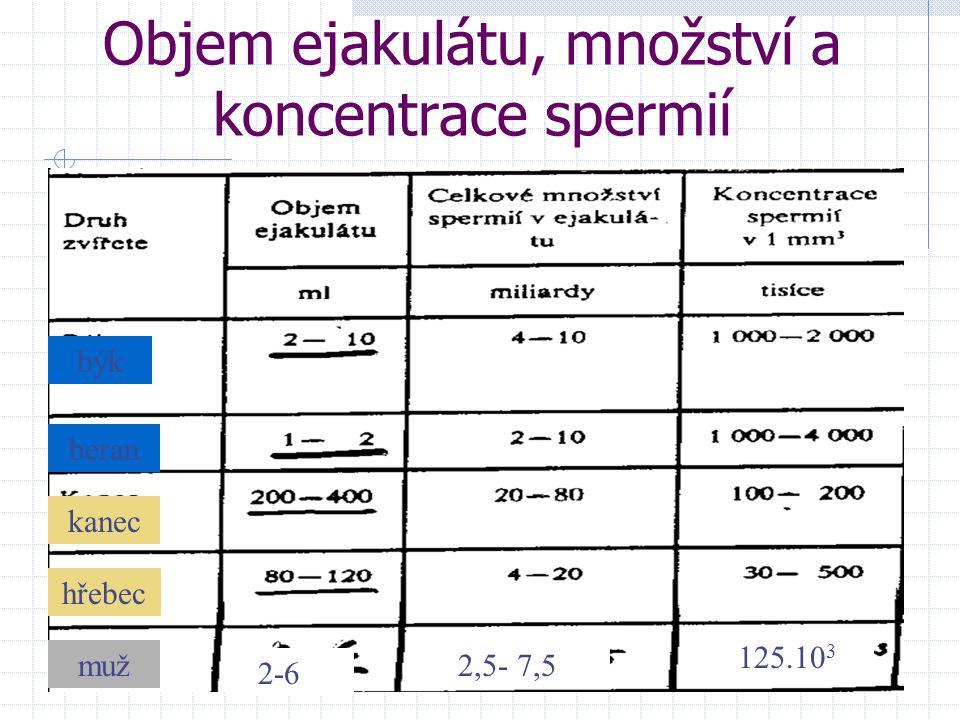 Objem ejakulátu, množství a koncentrace spermií