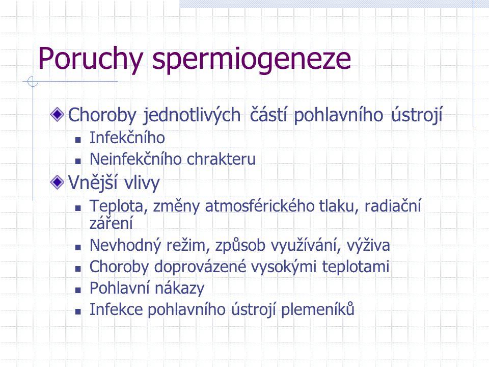 Poruchy spermiogeneze
