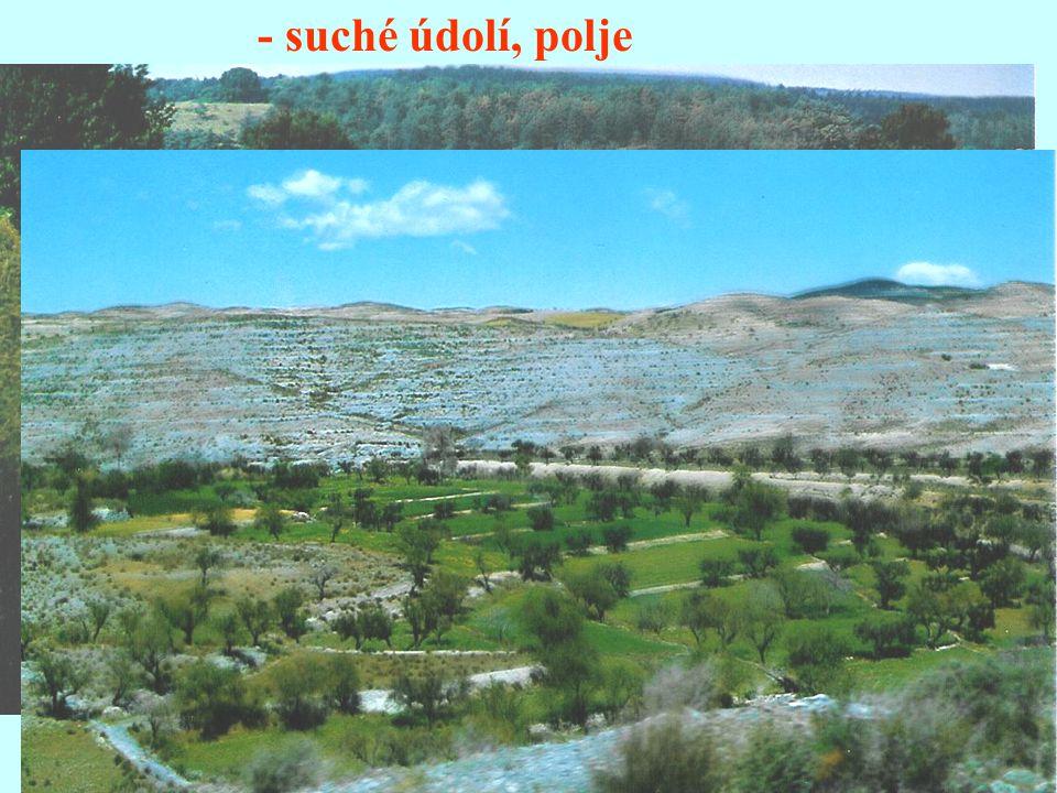 - suché údolí, polje