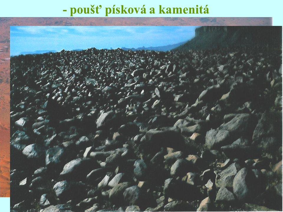 - poušť písková a kamenitá