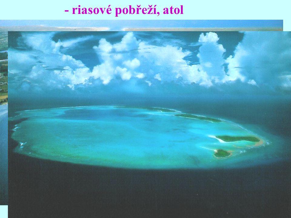 - riasové pobřeží, atol