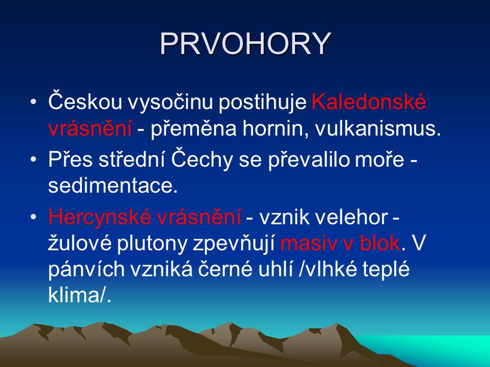PRVOHORY Českou vysočinu postihuje Kaledonské vrásnění - přeměna hornin, vulkanismus. Přes střední Čechy se převalilo moře - sedimentace.