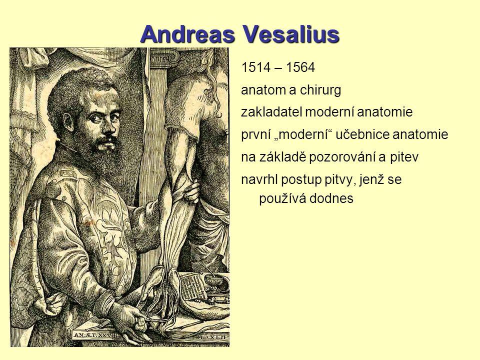 Andreas Vesalius 1514 – 1564 anatom a chirurg