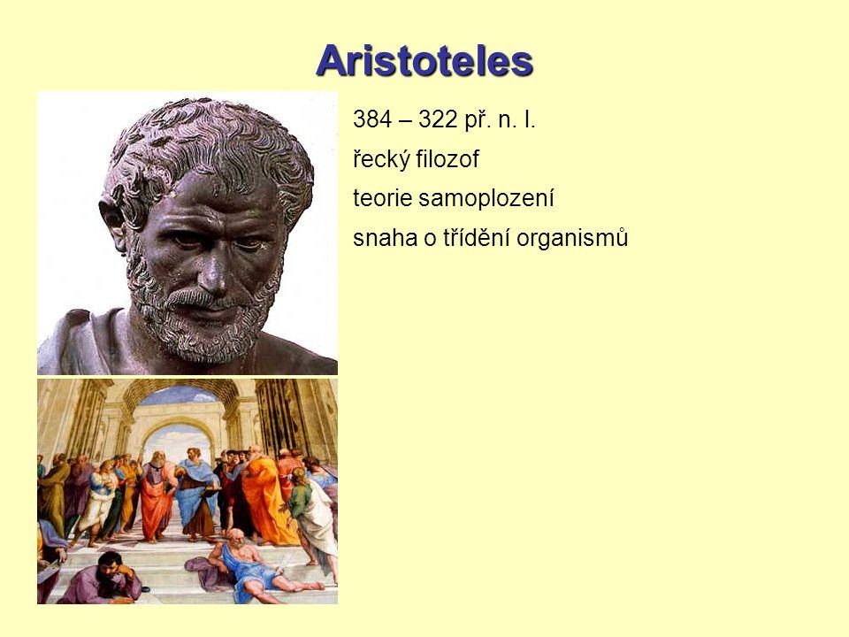 Aristoteles 384 – 322 př. n. l. řecký filozof teorie samoplození