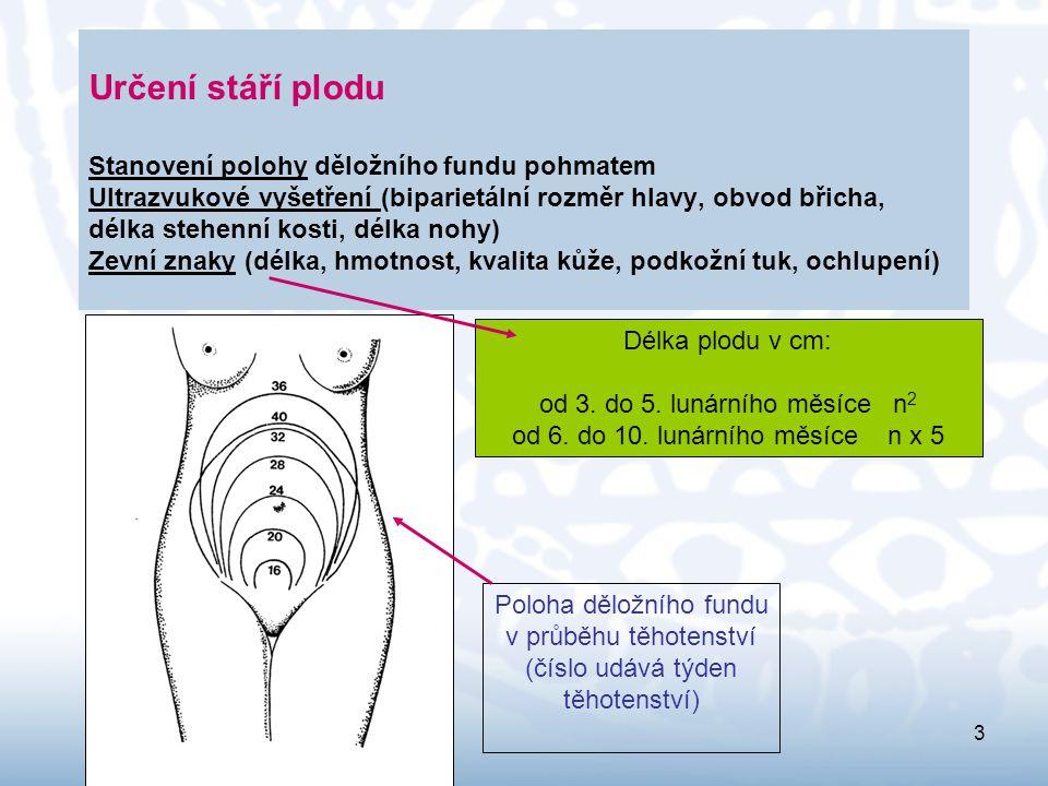 Určení stáří plodu Stanovení polohy děložního fundu pohmatem Ultrazvukové vyšetření (biparietální rozměr hlavy, obvod břicha, délka stehenní kosti, délka nohy) Zevní znaky (délka, hmotnost, kvalita kůže, podkožní tuk, ochlupení)