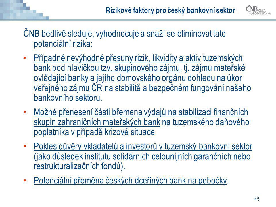 Rizikové faktory pro český bankovní sektor