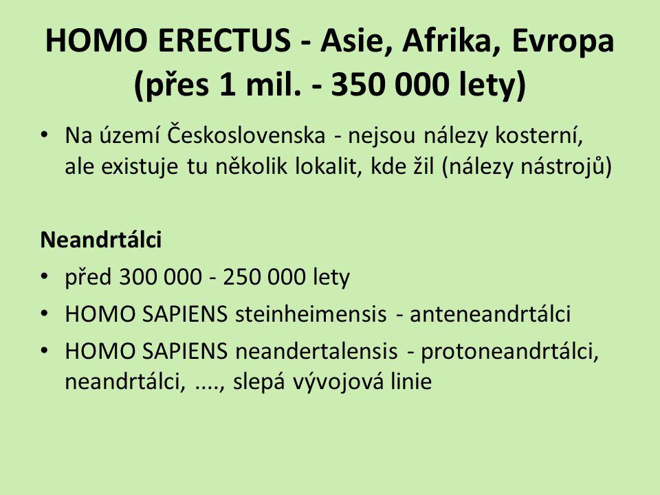 HOMO ERECTUS - Asie, Afrika, Evropa (přes 1 mil. - 350 000 lety)