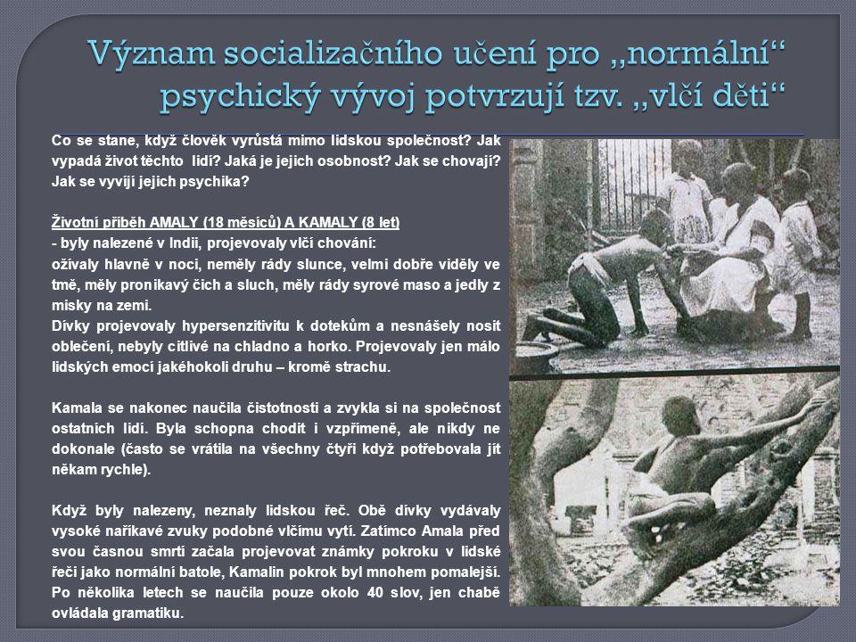 """Význam socializačního učení pro """"normální psychický vývoj potvrzují tzv. """"vlčí děti"""