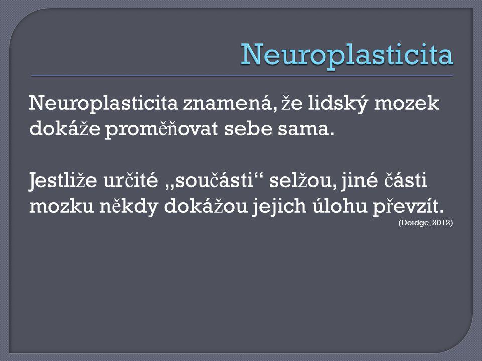 Neuroplasticita Neuroplasticita znamená, že lidský mozek dokáže proměňovat sebe sama.