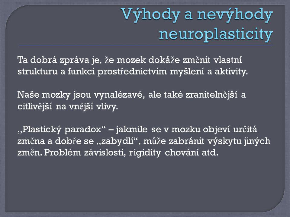 Výhody a nevýhody neuroplasticity