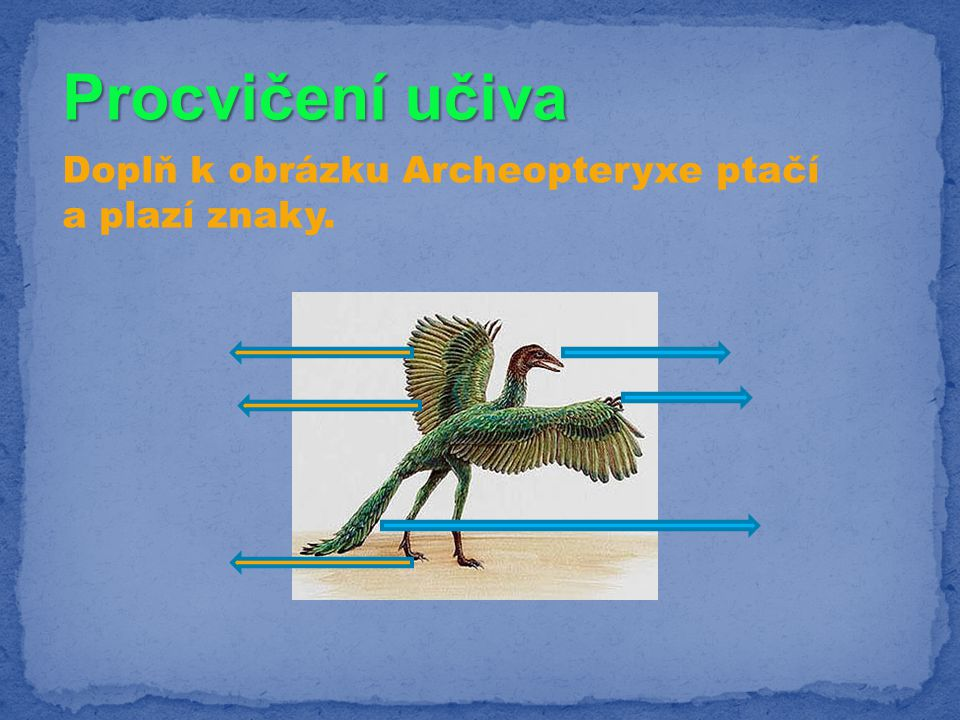 Procvičení učiva Doplň k obrázku Archeopteryxe ptačí a plazí znaky.