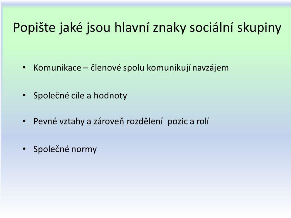 Popište jaké jsou hlavní znaky sociální skupiny