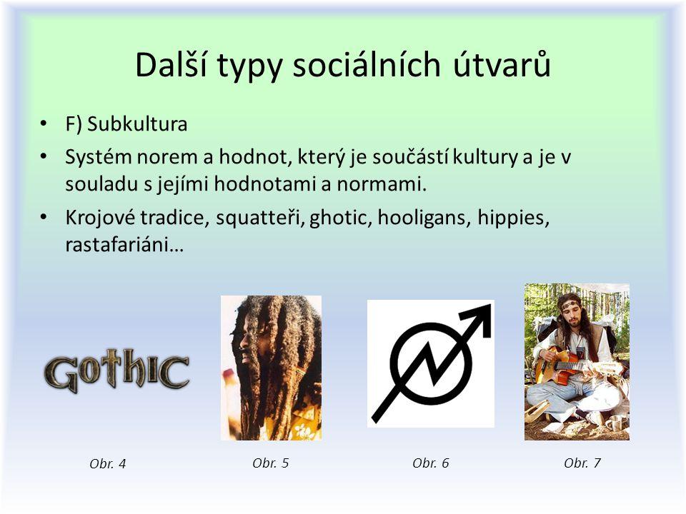 Další typy sociálních útvarů