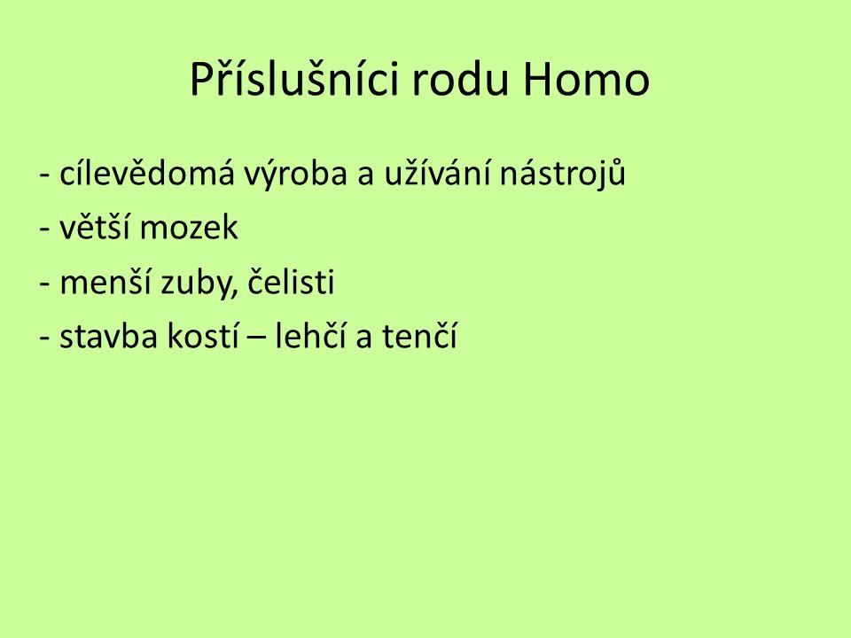 Příslušníci rodu Homo - cílevědomá výroba a užívání nástrojů