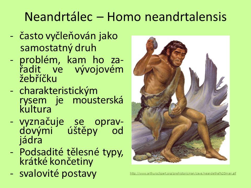 Neandrtálec – Homo neandrtalensis