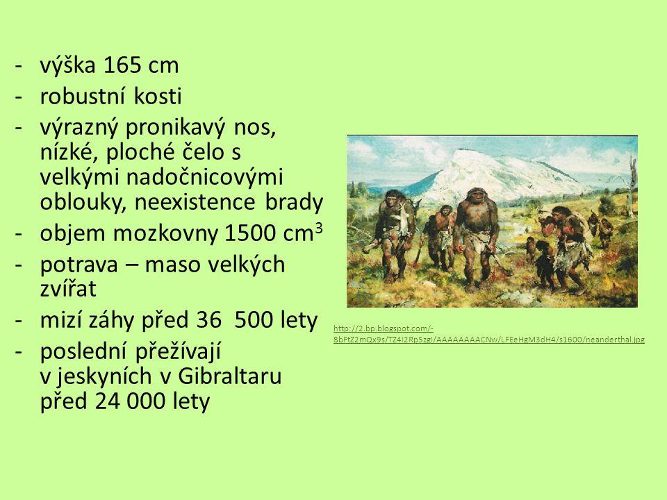 potrava – maso velkých zvířat mizí záhy před 36 500 lety