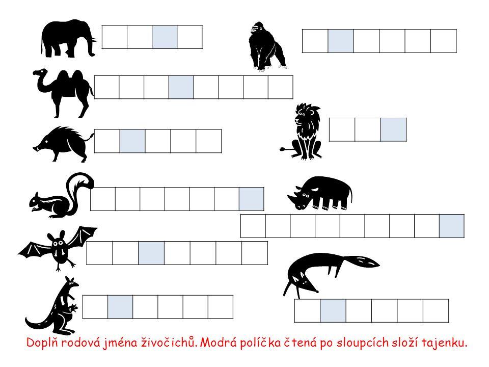 Doplň rodová jména živočichů