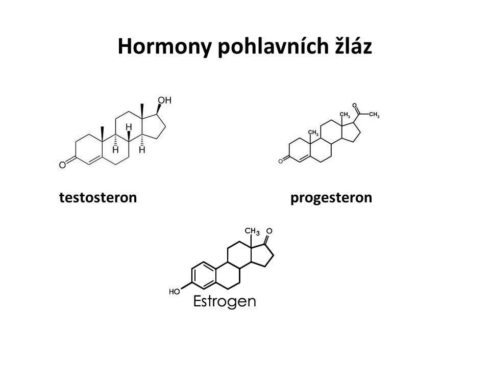 Hormony pohlavních žláz