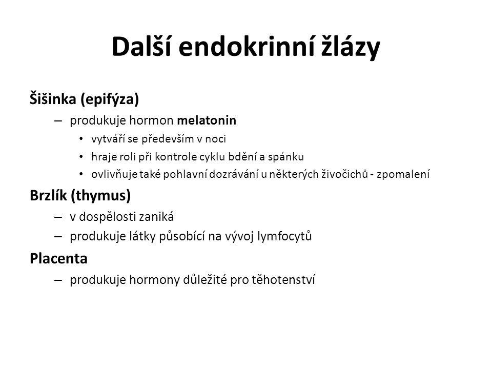 Další endokrinní žlázy