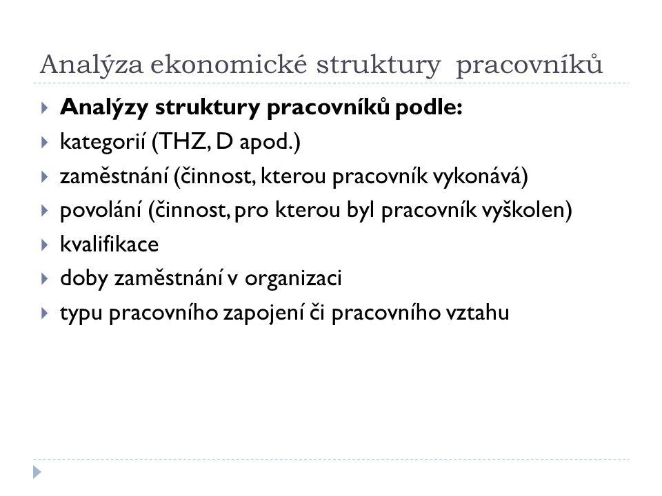 Analýza ekonomické struktury pracovníků