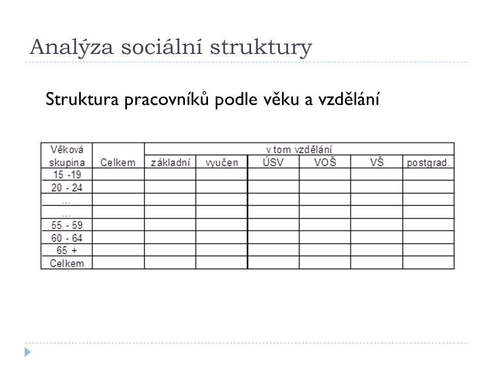 Analýza sociální struktury