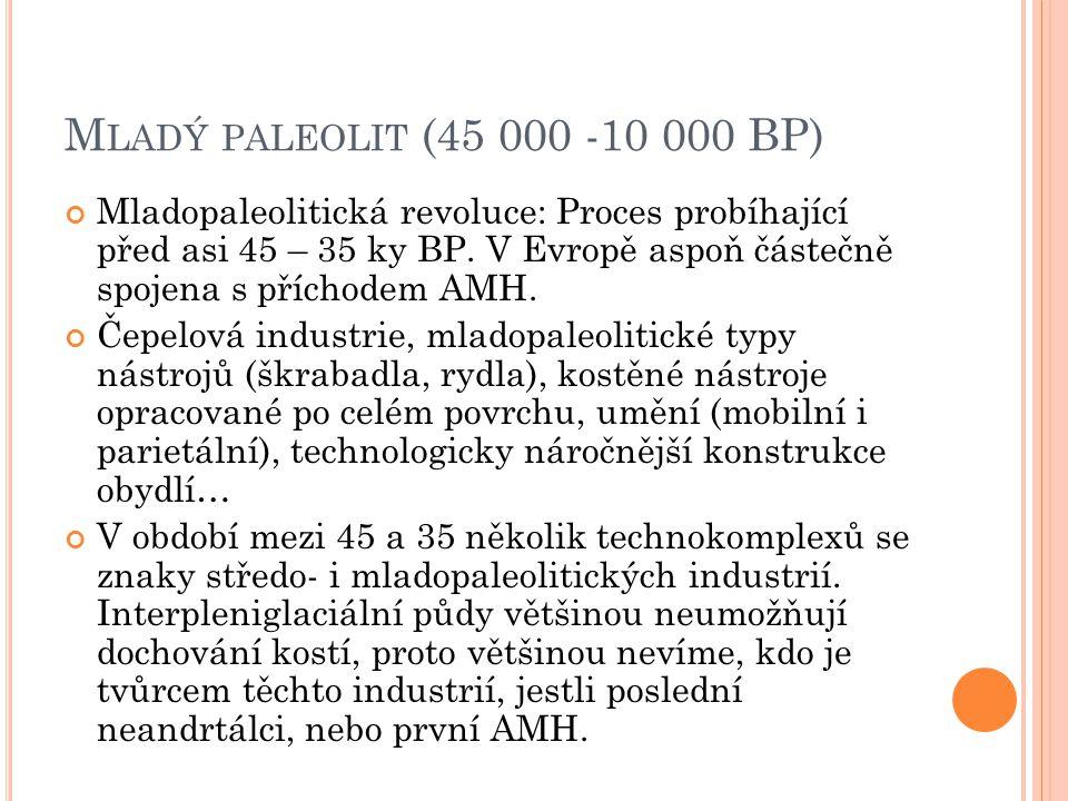 Mladý paleolit (45 000 -10 000 BP)