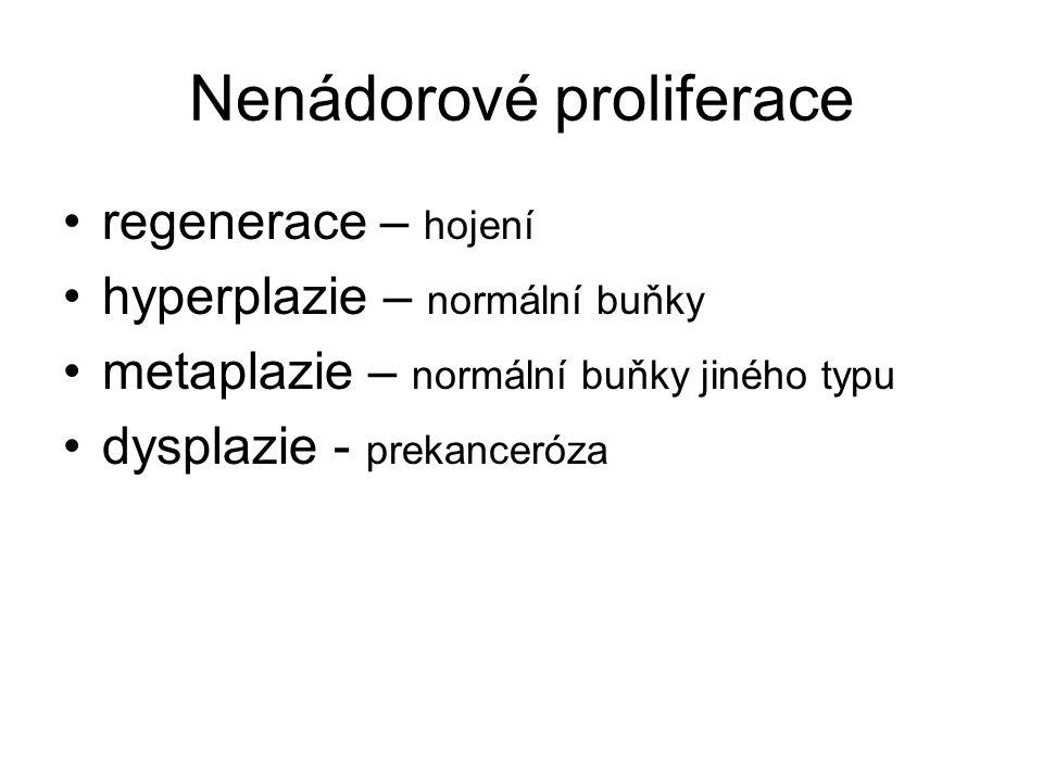 Nenádorové proliferace