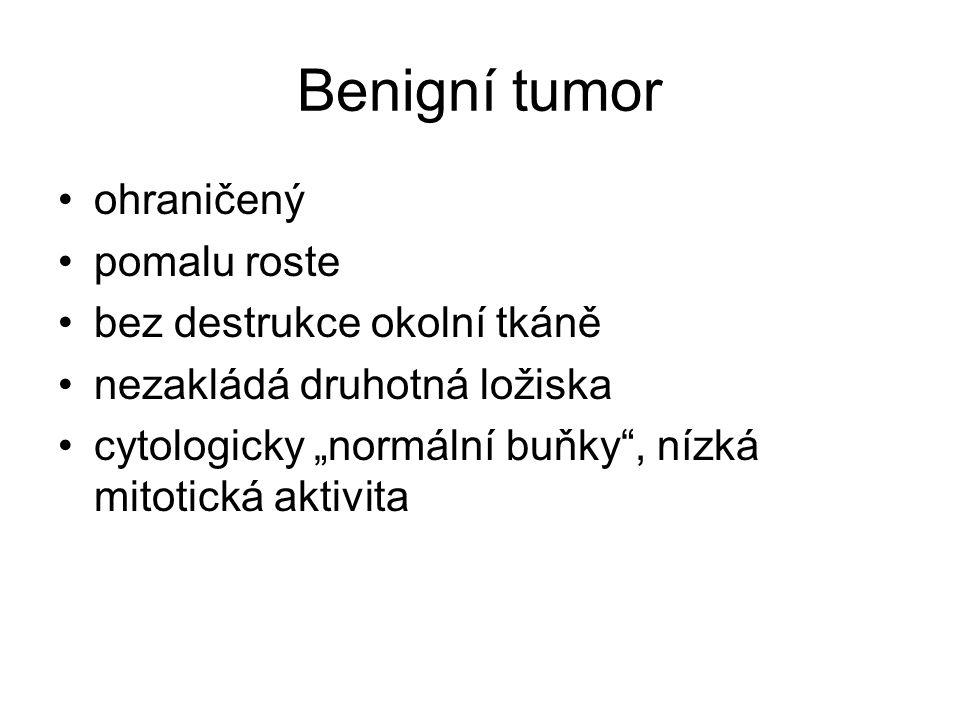 Benigní tumor ohraničený pomalu roste bez destrukce okolní tkáně