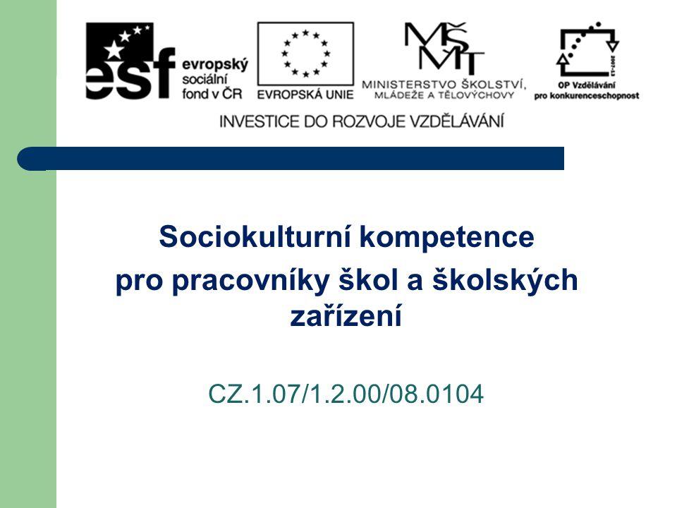 Sociokulturní kompetence pro pracovníky škol a školských zařízení