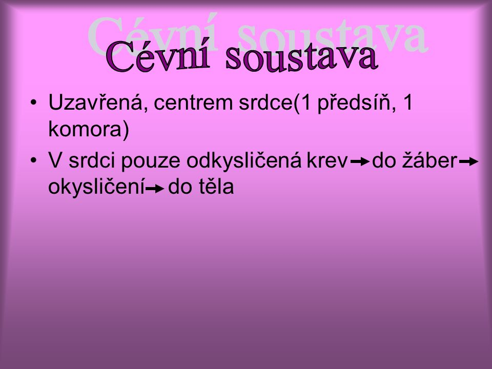 Cévní soustava Uzavřená, centrem srdce(1 předsíň, 1 komora)