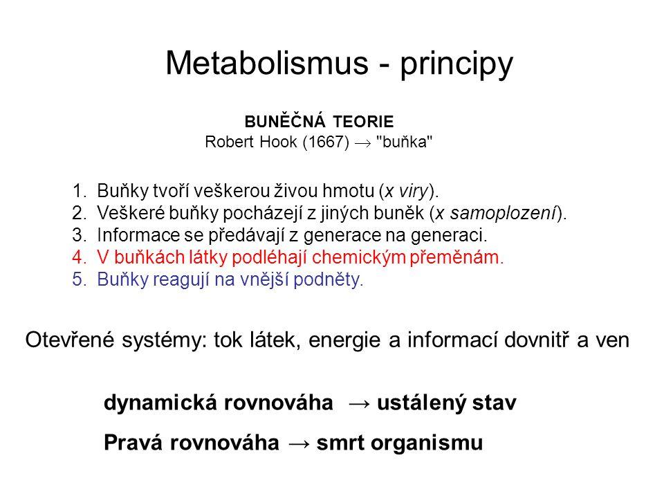 Metabolismus - principy