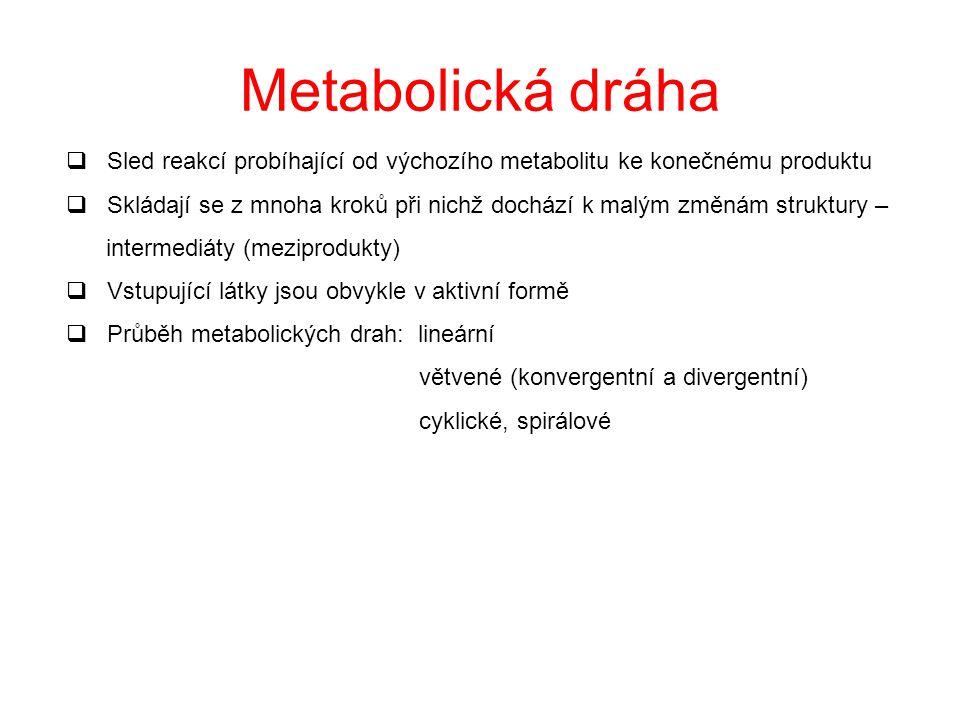 Metabolická dráha Sled reakcí probíhající od výchozího metabolitu ke konečnému produktu.
