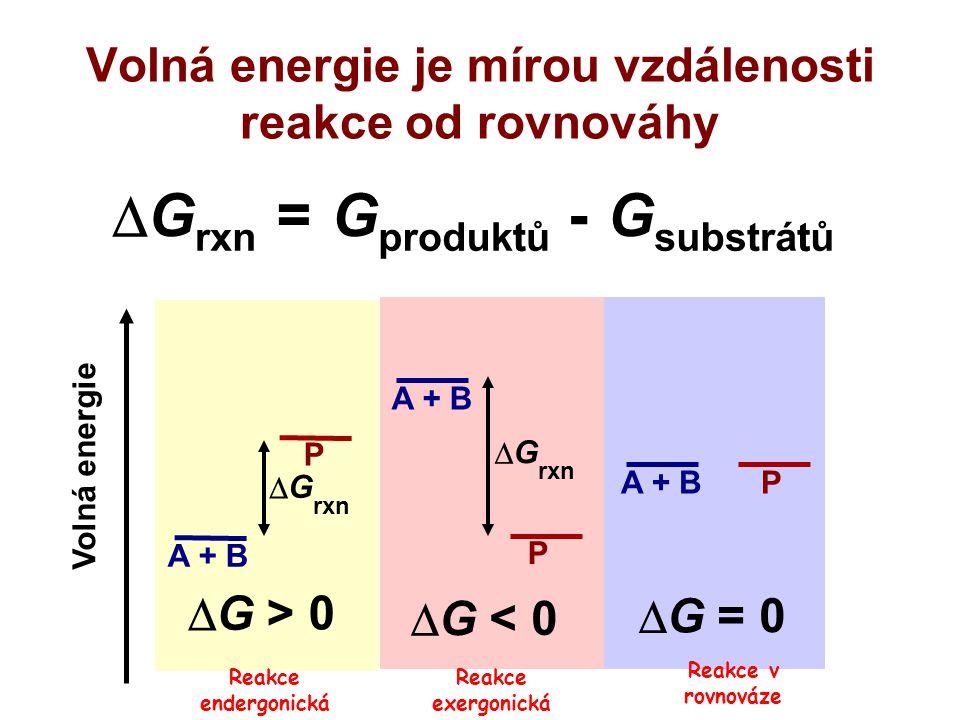 Volná energie je mírou vzdálenosti reakce od rovnováhy