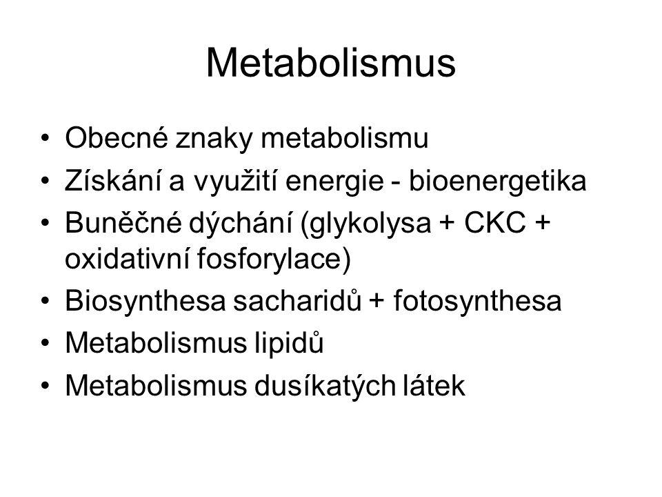 Metabolismus Obecné znaky metabolismu