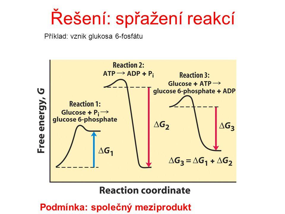 Řešení: spřažení reakcí