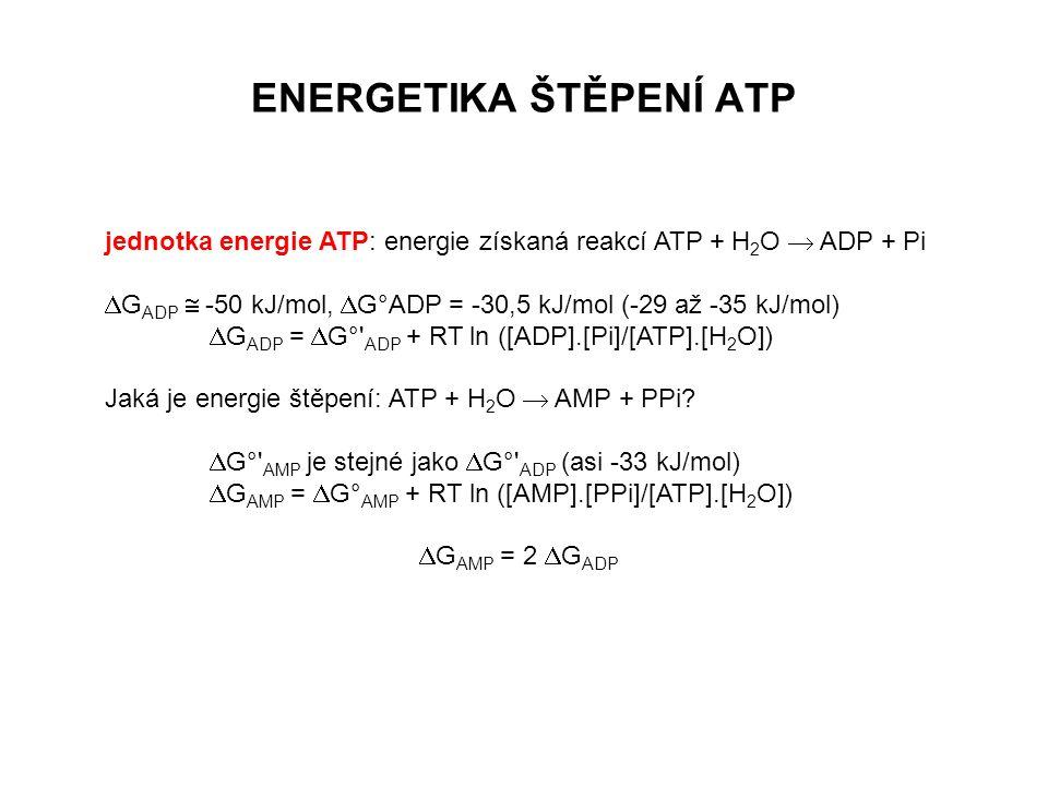 ENERGETIKA ŠTĚPENÍ ATP