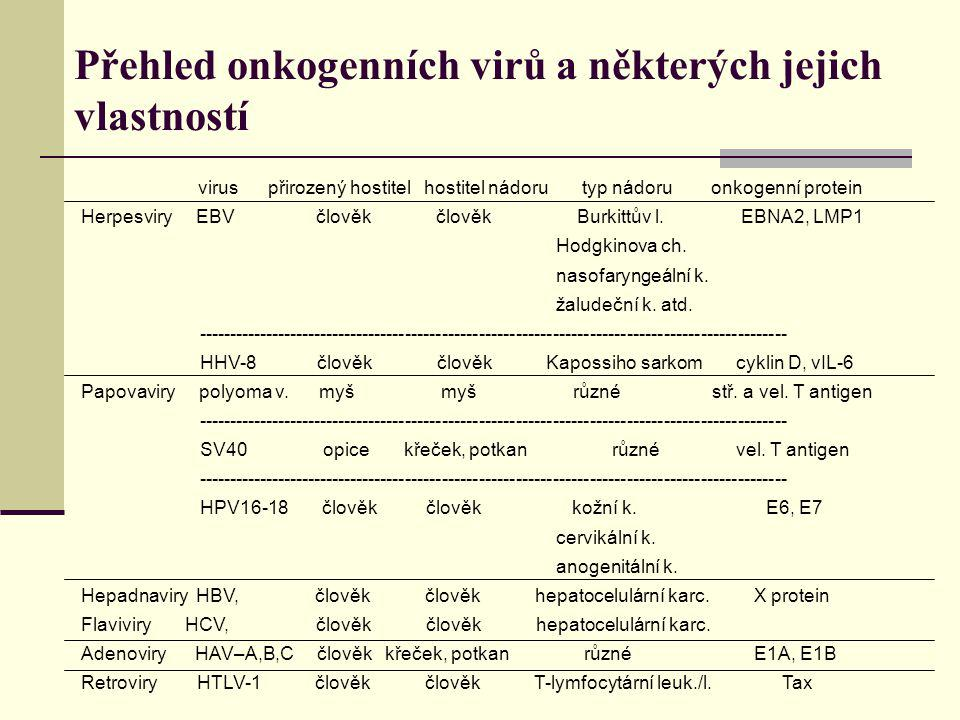 Přehled onkogenních virů a některých jejich vlastností