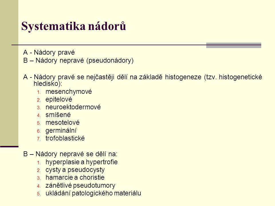 Systematika nádorů A - Nádory pravé B – Nádory nepravé (pseudonádory)