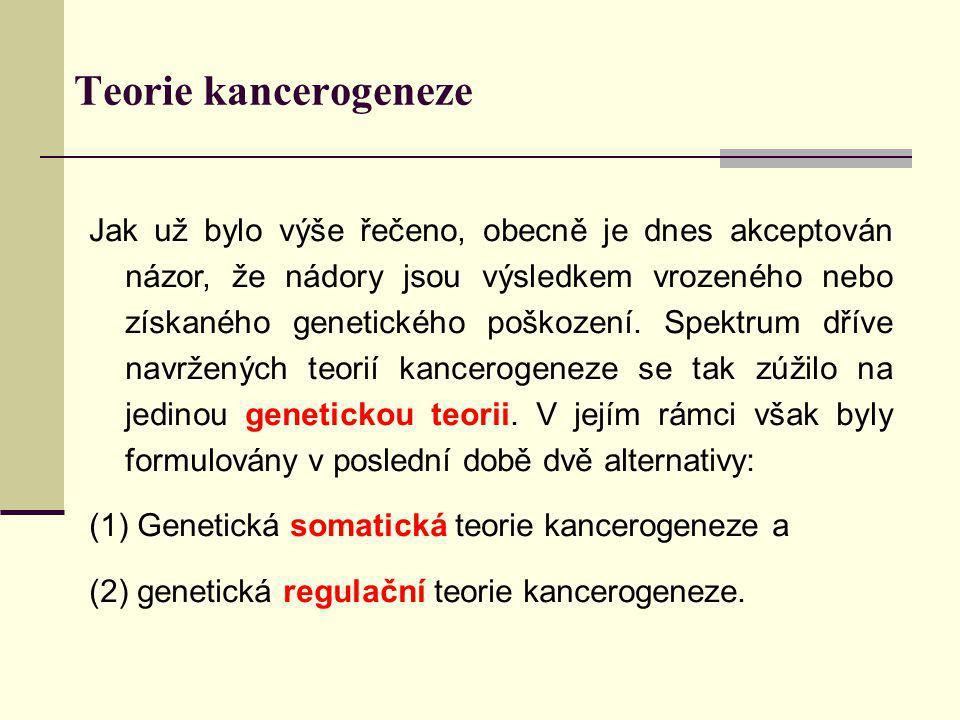 Teorie kancerogeneze