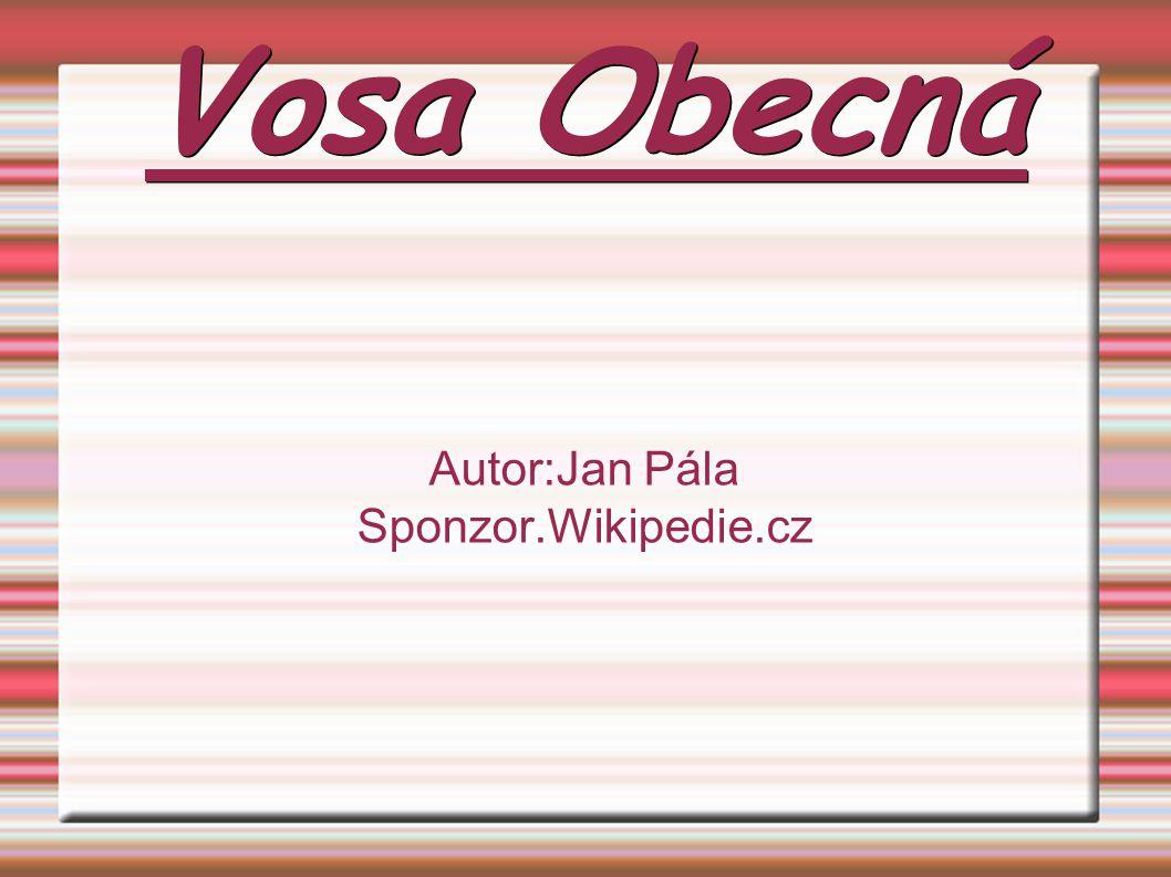 Autor:Jan Pála Sponzor.Wikipedie.cz