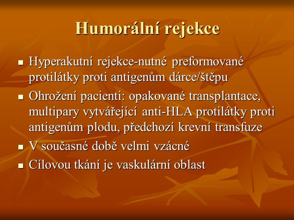 Humorální rejekce Hyperakutní rejekce-nutné preformované protilátky proti antigenům dárce/štěpu.