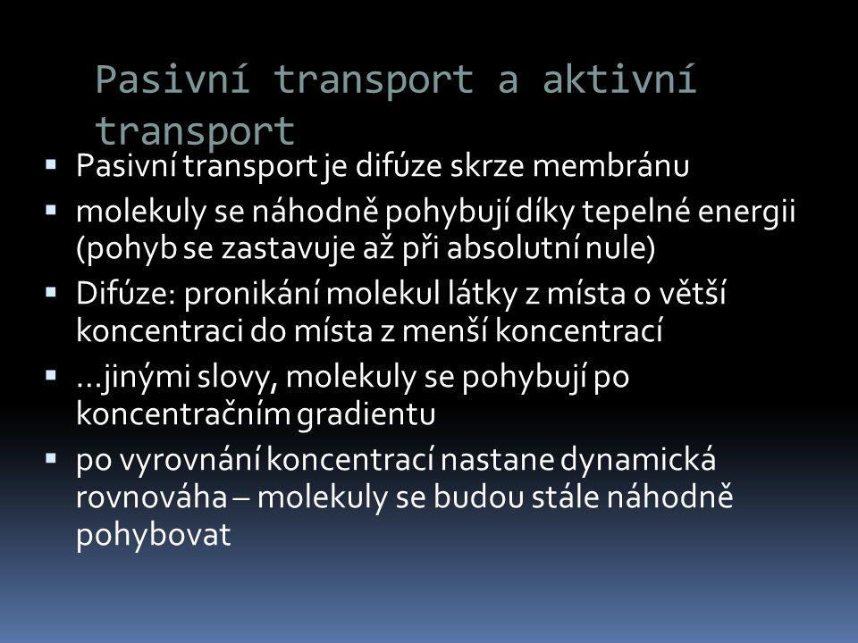 Pasivní transport a aktivní transport