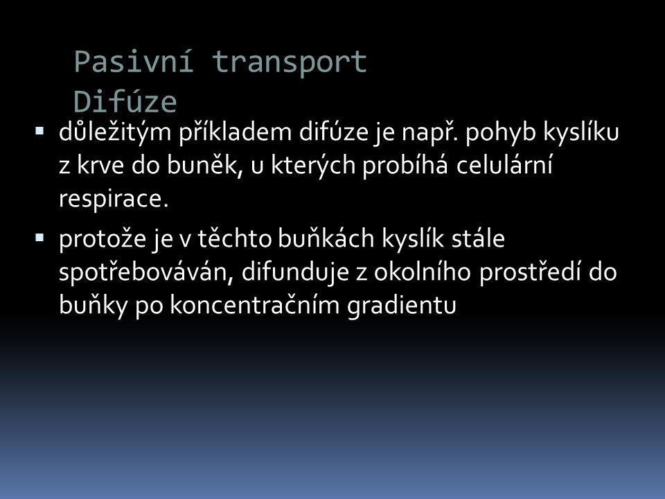 Pasivní transport Difúze