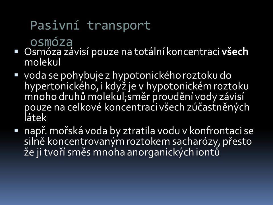 Pasivní transport osmóza