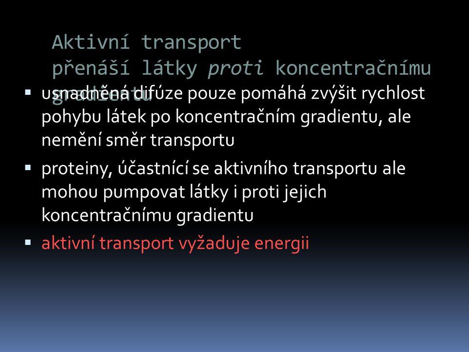 Aktivní transport přenáší látky proti koncentračnímu gradientu