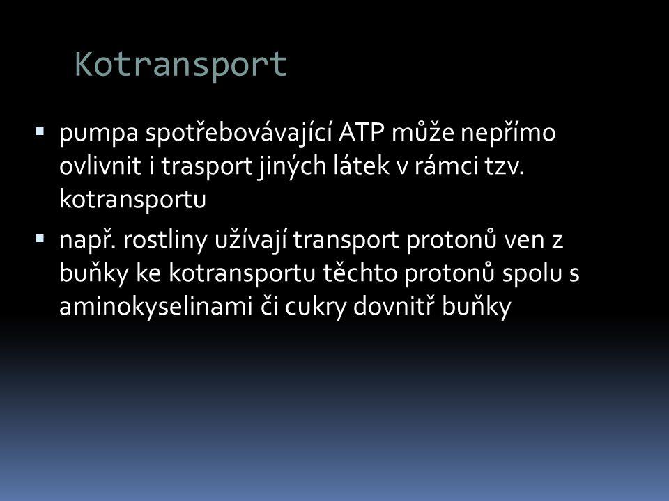 Kotransport pumpa spotřebovávající ATP může nepřímo ovlivnit i trasport jiných látek v rámci tzv. kotransportu.