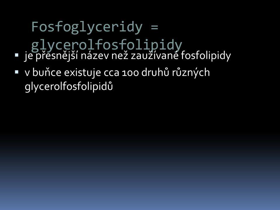 Fosfoglyceridy = glycerolfosfolipidy