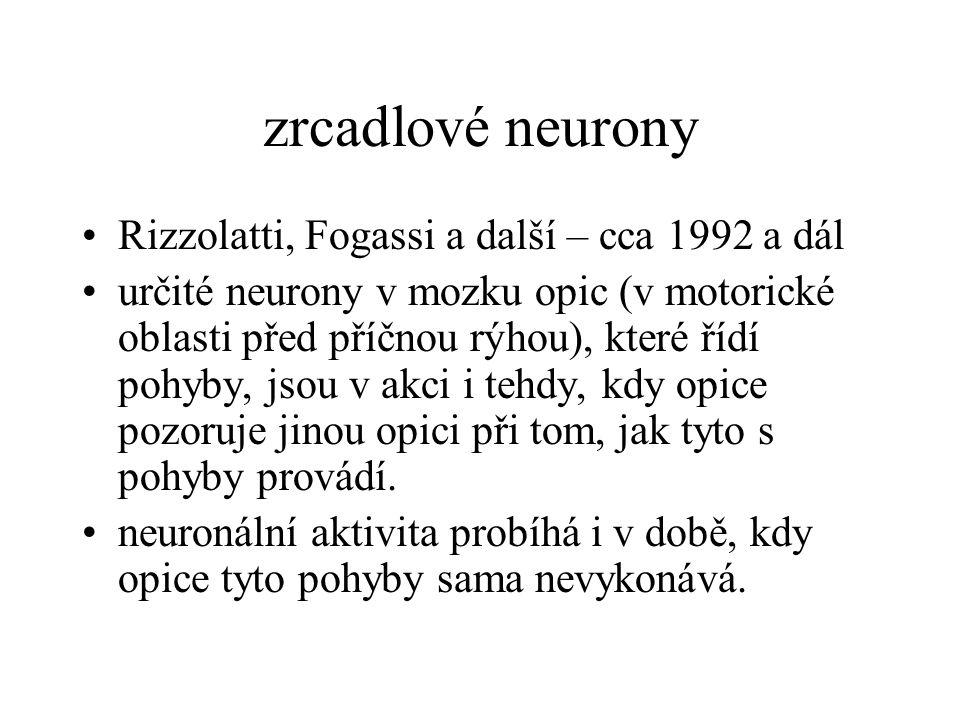 zrcadlové neurony Rizzolatti, Fogassi a další – cca 1992 a dál