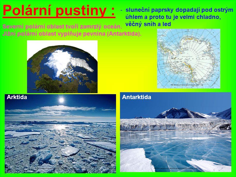Polární pustiny : sluneční paprsky dopadají pod ostrým