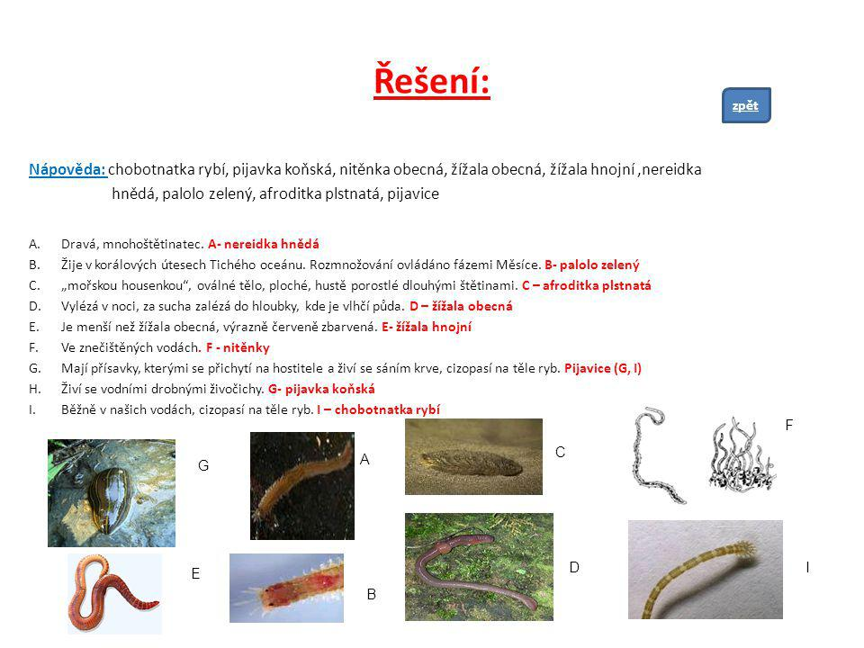 Řešení: zpět. Nápověda: chobotnatka rybí, pijavka koňská, nitěnka obecná, žížala obecná, žížala hnojní ,nereidka.